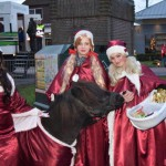 Kerstmarkt 2014 (12)