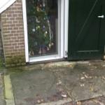 151212 kerstboom